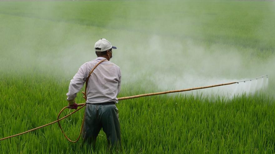 """La CHG cree que economía, agricultura y ecosistemas deben estar """"integrados"""" para garantizar el agua perfecta"""