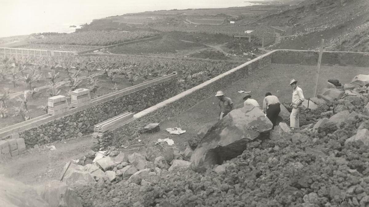 Cultivo característico en forma de terrazas en La Palma. (Cedida por la cronista María Victoria Hernández).