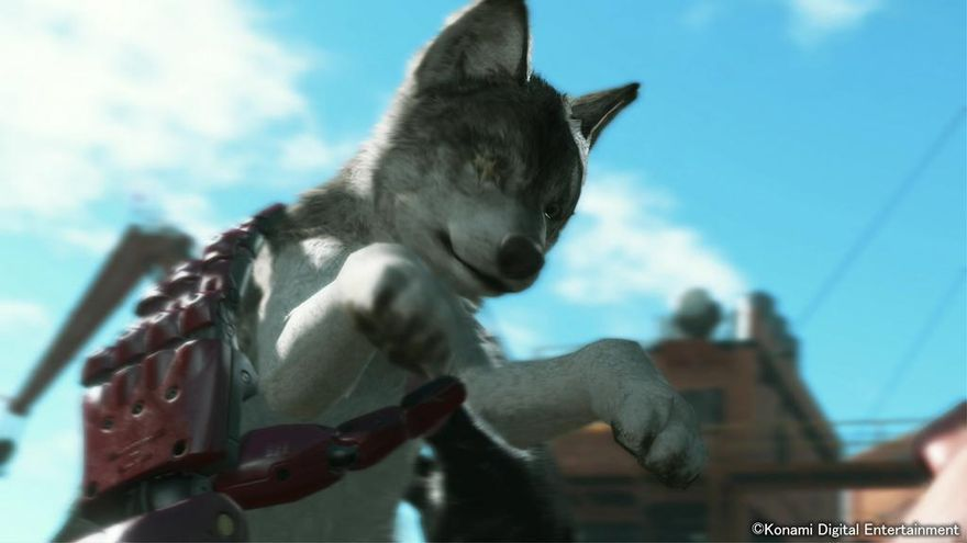 Solid snake wolf