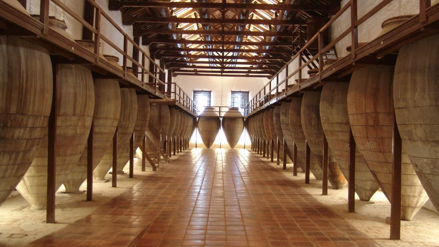 Sala de tinajas en Valdepeñas