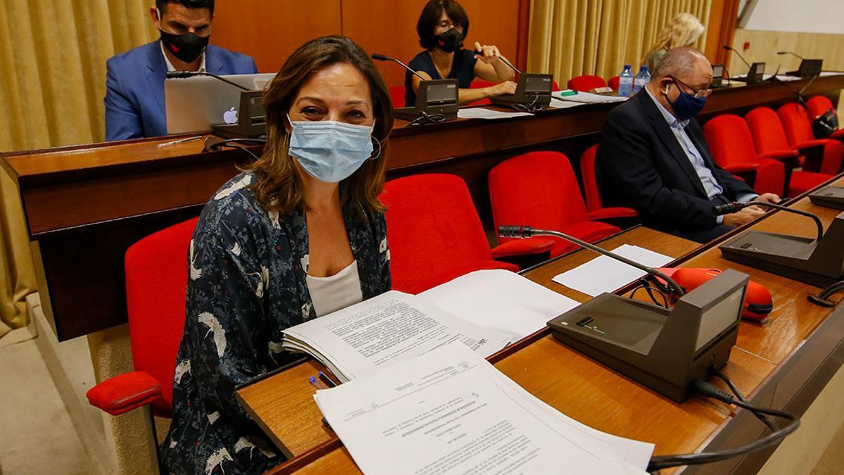 La portavoz del PSOE, Isabel Ambrosio, en el Pleno