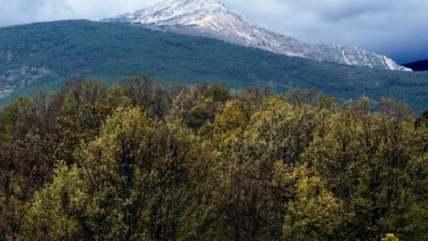 Pico del Lobo, en la Sierra Norte de Guadalajara