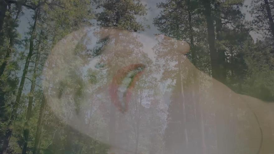 Captura de la obra de la artista canaria Saida Santana: 'Carta de amor al planeta'.