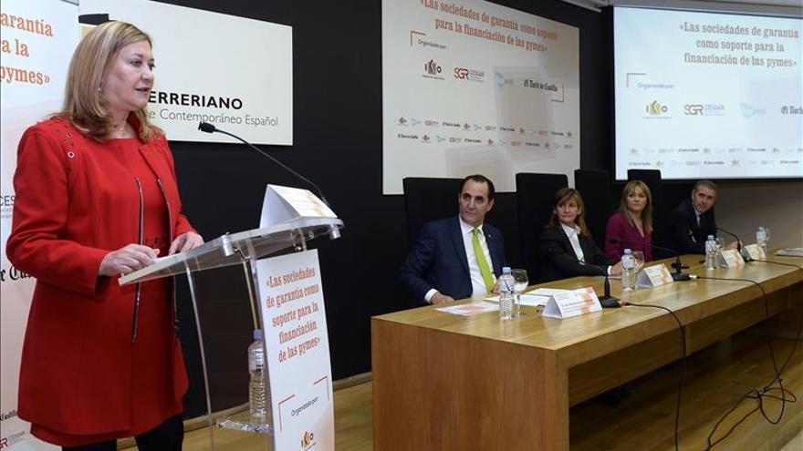 Del Olmo advierte hay sectores a los que cuesta financiarse tras la crisis