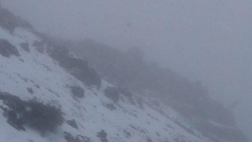 Tramo de la zona de Los Andenes de la carretera LP-4, este sábado, cubierto de nieve. Foto: ANA BEA.