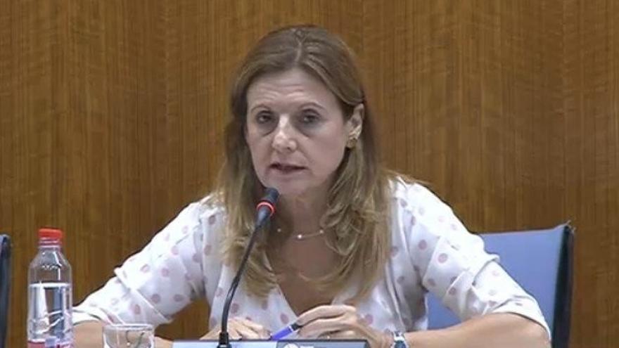 Junta informa este mes en Parlamento de la muerte de una mujer en hospital de Úbeda y de pruebas a menores en Archidona