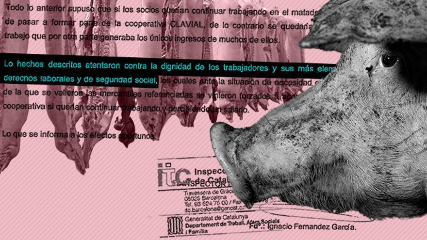 Miedo, accidentes laborales y racismo, la dura realidad del trabajo en los mataderos españoles