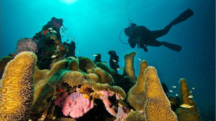 La asociación quiere promover un turismo sostenible y responsable. / Solidive