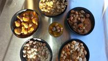 Caracoles, la ruta gastronómica de la primavera en Córdoba