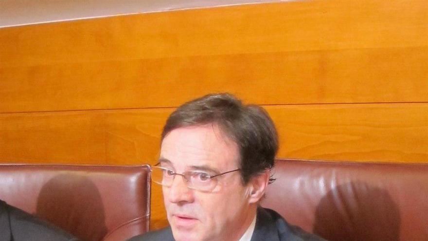 Diego Higuera durante su comparencia en la comisión de investigación en el Parlamento.