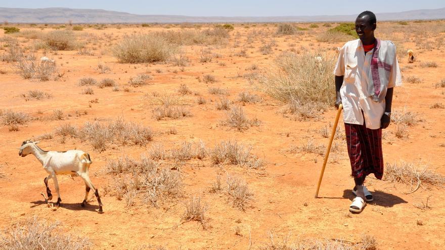 Imagen de las consecuencias de la sequía prolongada en África oriental / Oxfam.