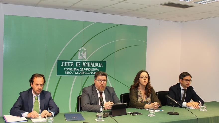 Junta notifica a Gobierno la detección de un caso aislado de Xylella en plantas ornamentales en El Ejido (Almería)