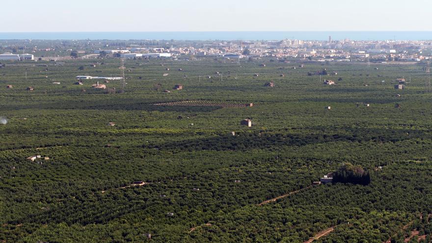 Imagen de campos de la huerta valenciana