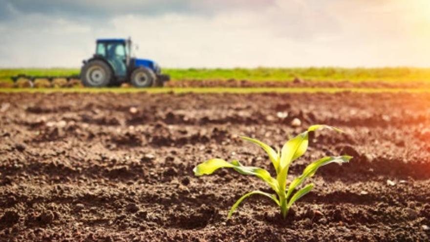 Una PNL buscará que 10.000 profesionales puedan optar a ayudas de agricultura ecológica ante el fin del PDR.