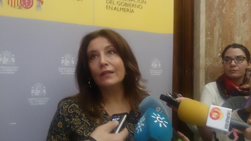 """Gobierno en Andalucía urge a legislar para que jueces puedan tomar """"medidas especiales de protección a menores"""""""
