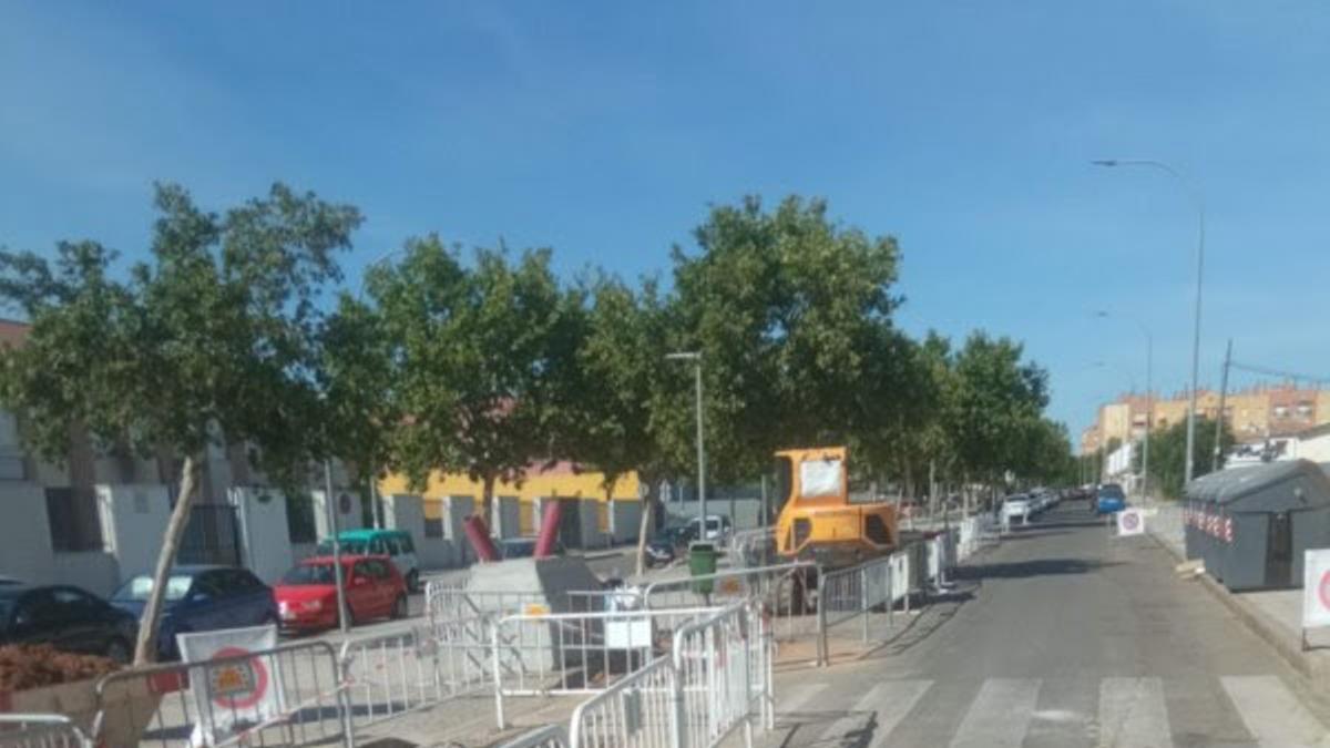 Obras de Endesa en Córdoba