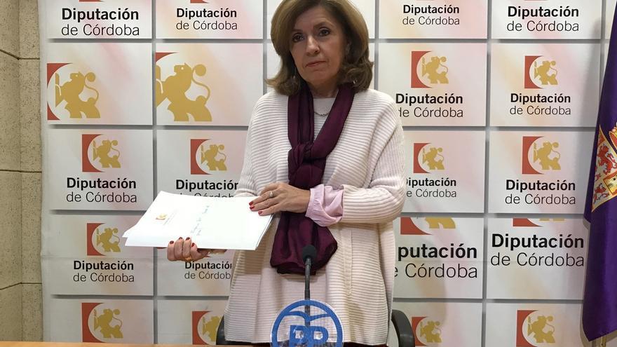 """Botella (PP) critica la """"opacidad y uso paternalista"""" de la Fundación Botí"""