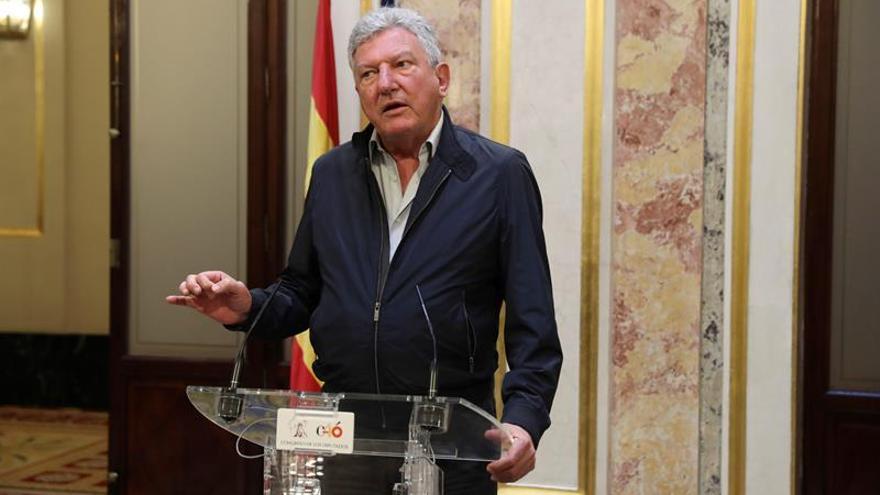 El diputado de Nueva Canarias, Pedro Quevedo