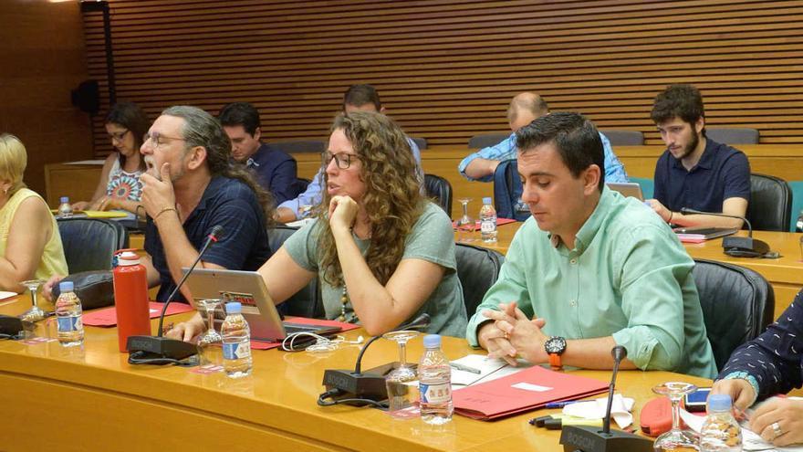 La diputada de Podemos encargada de Medio Ambiente, Beatriz Gascó, durante una comisión