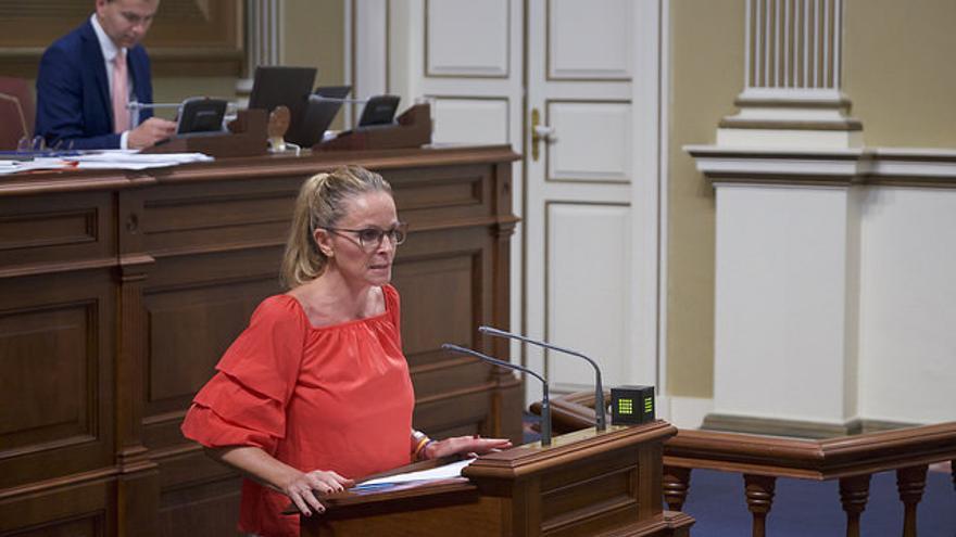 Luz Reverón en el Parlamento de Canarias