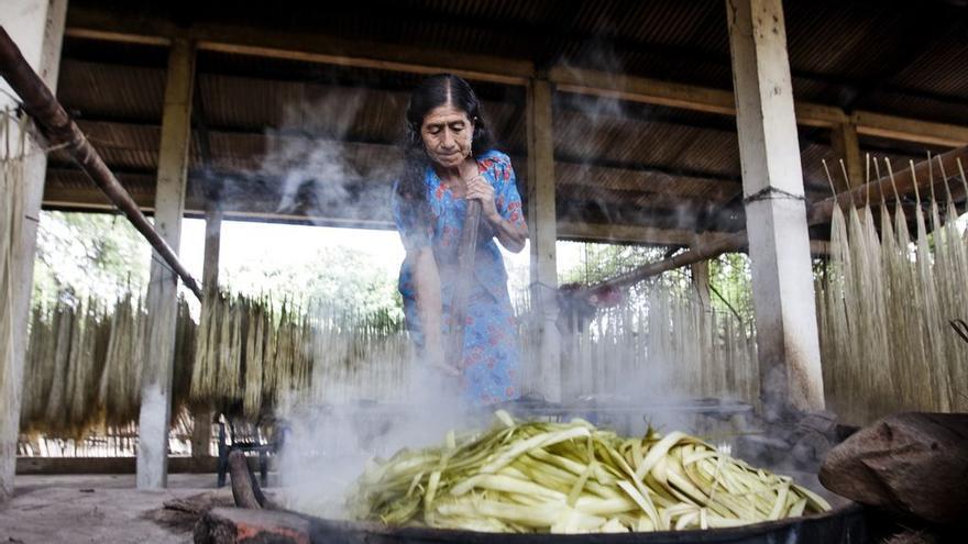 Mujeres de Mapel