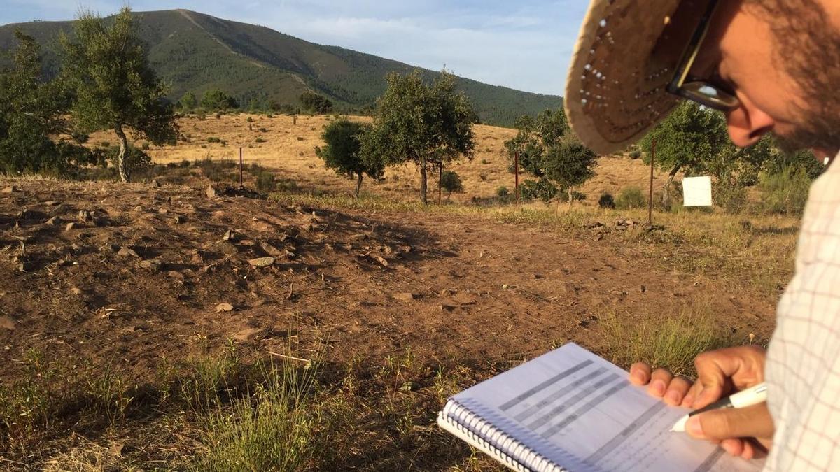 Estudiantes y voluntarios de las universidades de Granada, Salamanca, Extremadura, Vigo y UNED ya trabajan para conocer el dolmen