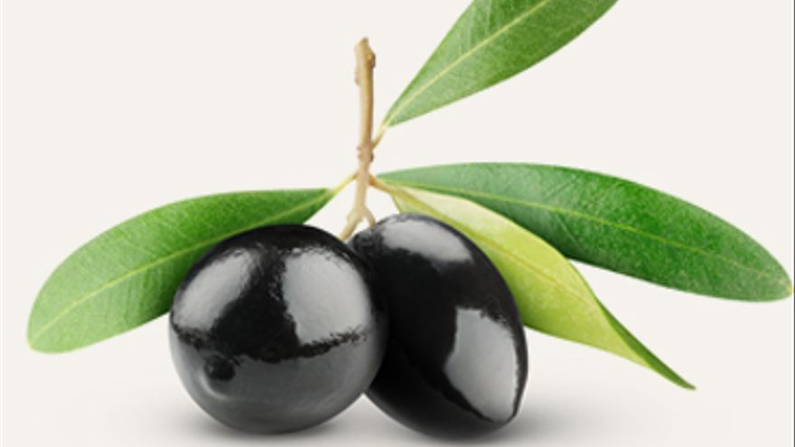 Aceituna negras