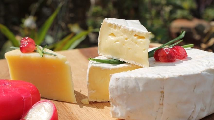 cuanto engorda el queso panela