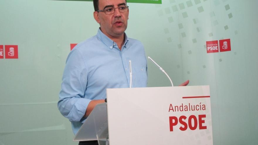 El PSOE quiere una comisión de investigación sobre la trama Gürtel en el Parlamento de Andalucía
