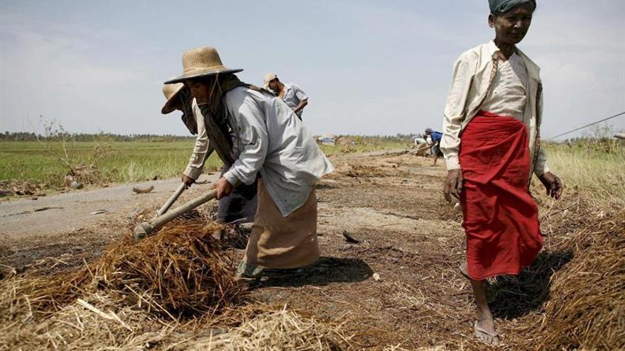 El trabajo infantil en Birmania afecta a 1,3 millones de menores