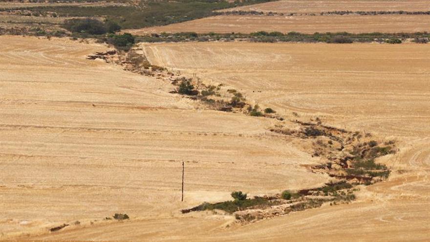 Ciudad del Cabo pide a la población que reduzca el consumo de agua por la grave sequía
