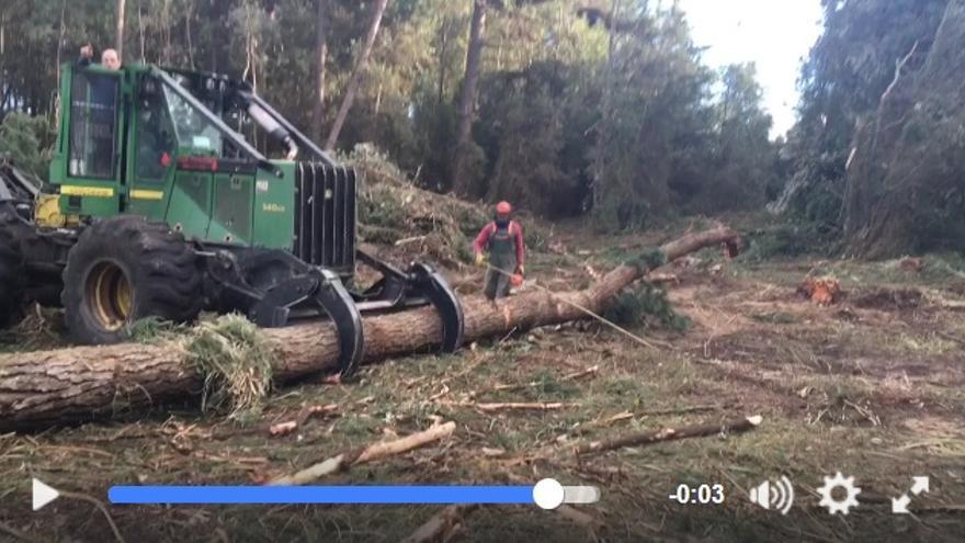 Imagen de uno de los vídeos difundidos por internet.   Marcos Cao