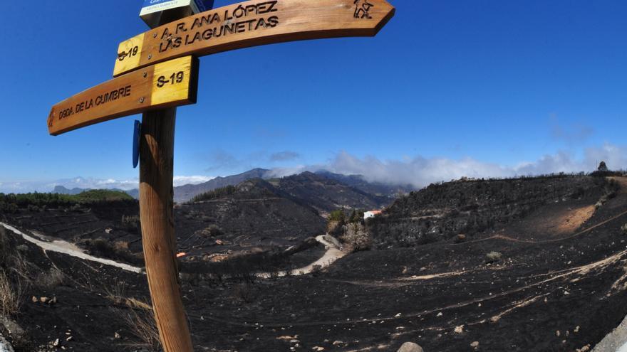 Terrenos quemados por el incendio de Gran Canaria