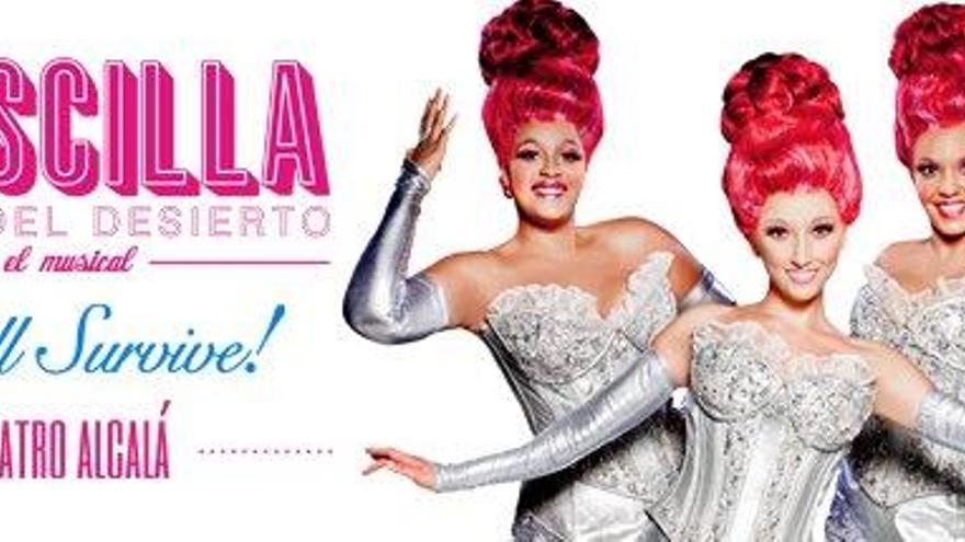 Priscilla. Fotografía de la web del Nuevo Teatro Alcalá