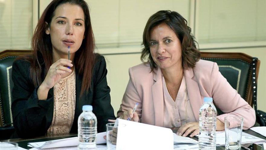La vicepresidenta del Gobierno de Canarias, Patricia Hernández (i), junto a la directora general de Trabajo, Ana Fernández Machado.
