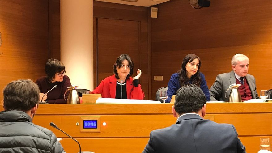 La diputada de Esquerra Unida y denunciante del caso Taula, Rosa Pérez Garijo, en la comisión de las Corts.