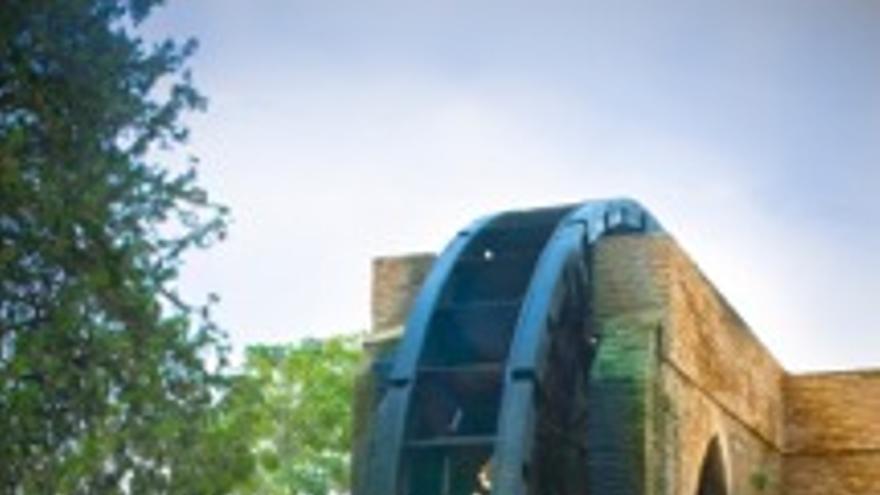 La popular noria de riego conocida como 'rueda de La Ñora', imágen de María Manzanera