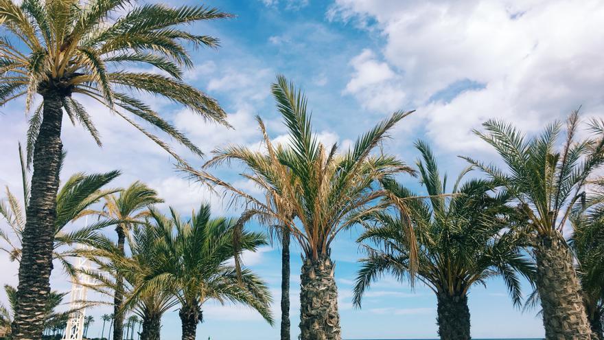 Un viaje inquietante hasta el Levante español