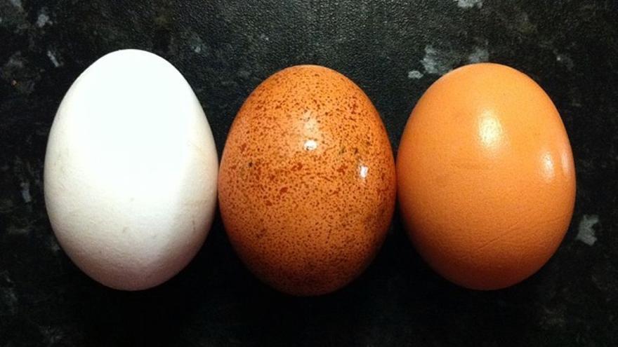 cuantos huevos por semana puede comer un nino