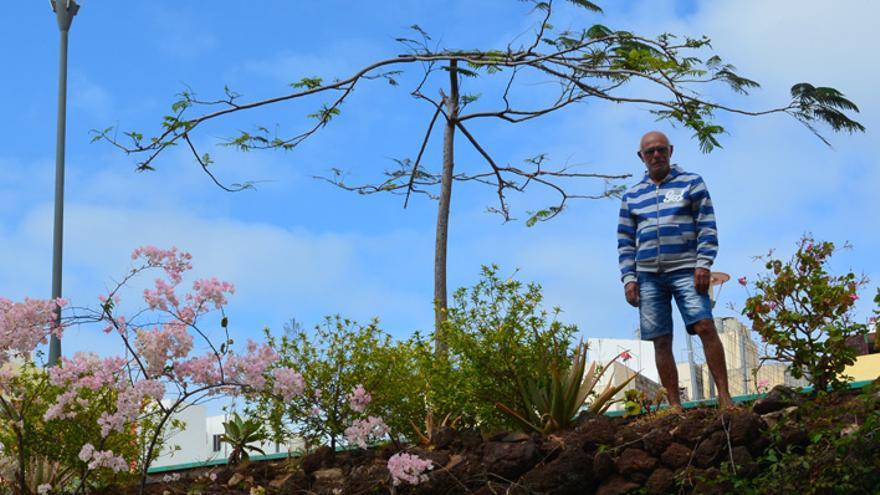 Manuel Morán, jardinero espontáneo de la Plaza del Pueblo