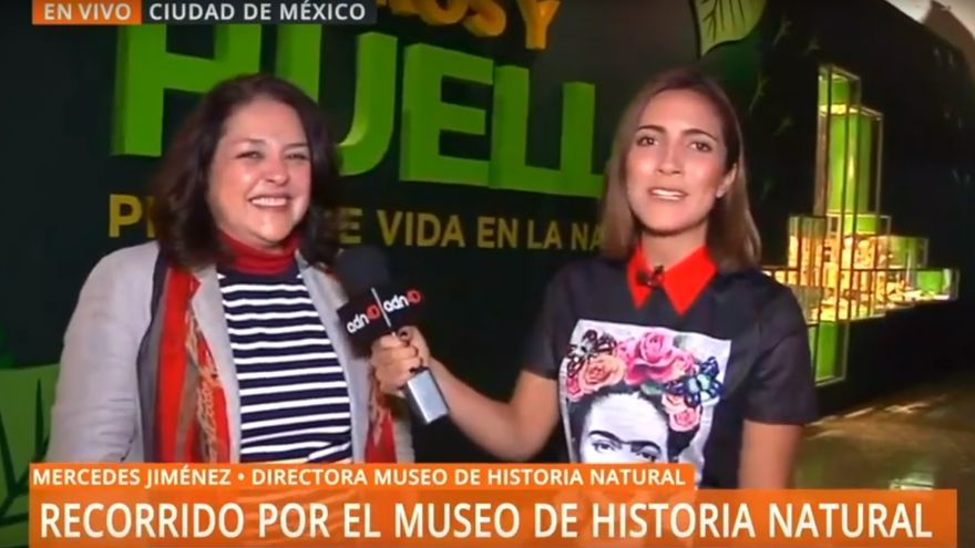 La periodista mexicana Luisa Cantú en el momento del lapsus