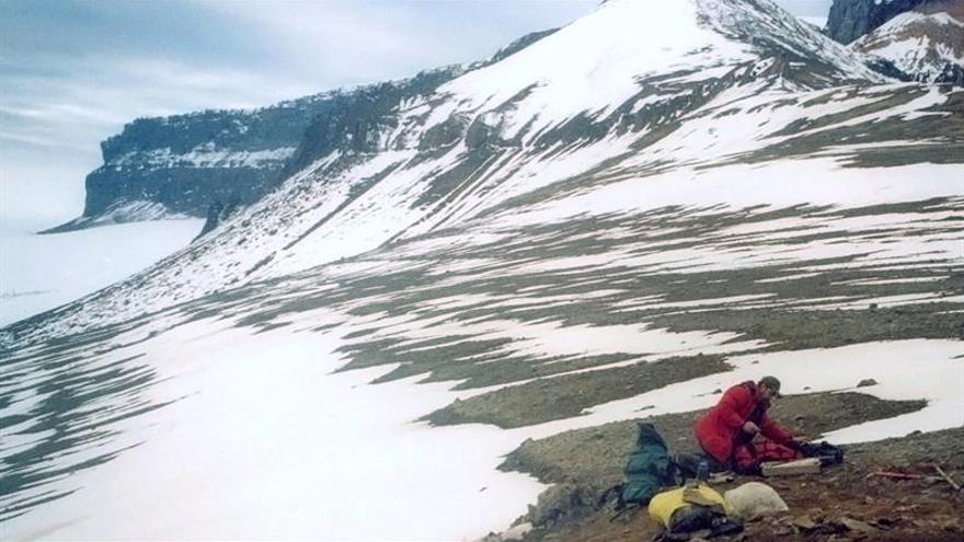 Una investigación revela el enfriamiento de la Península Antártica