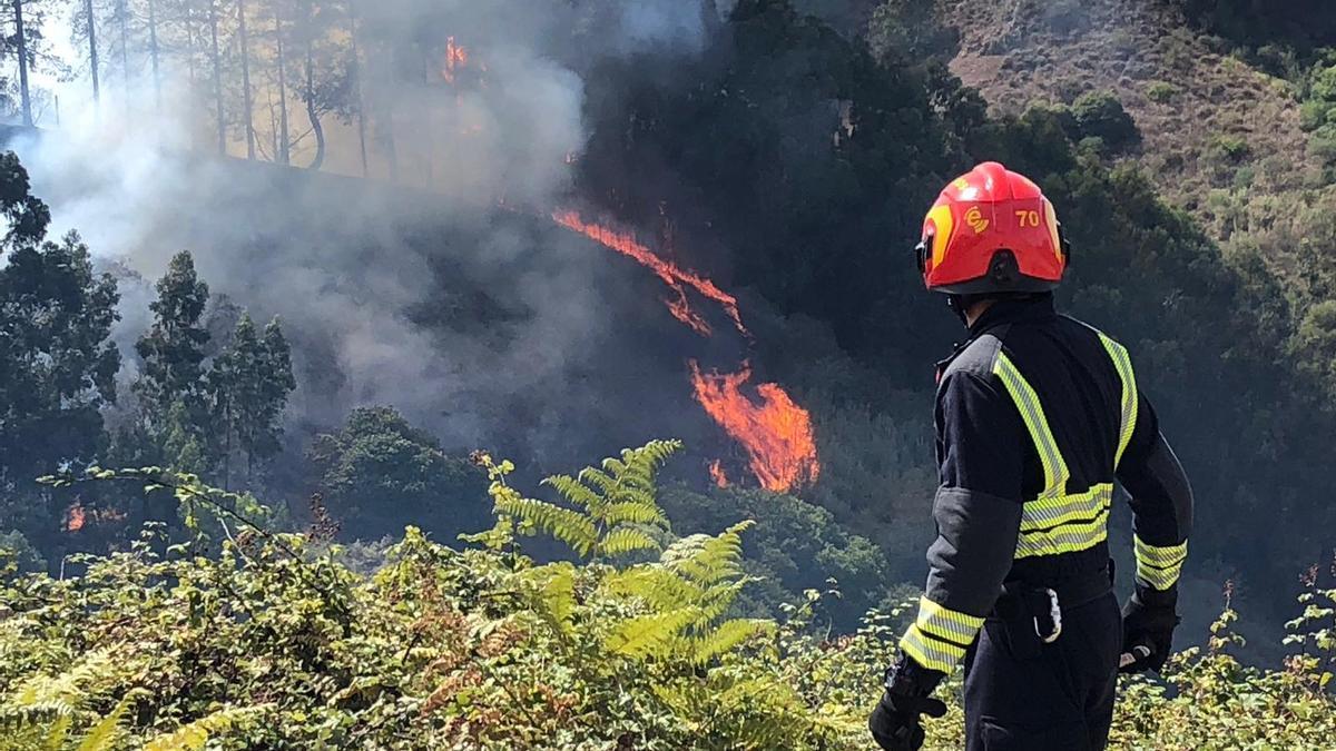 Un bombero, frente al fuego declarado en Gran Canaria (Imagen de archivo)