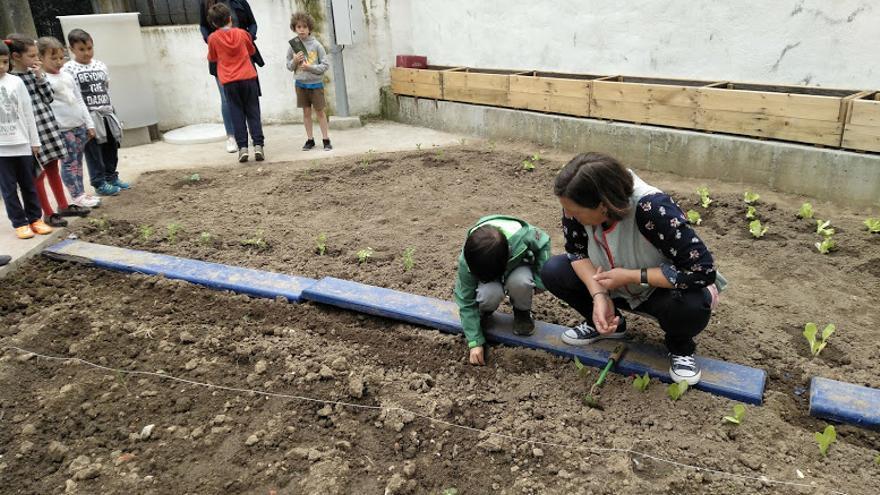 Un alumno del CEIP Cisneros asiste a un taller en un huerto ecológico