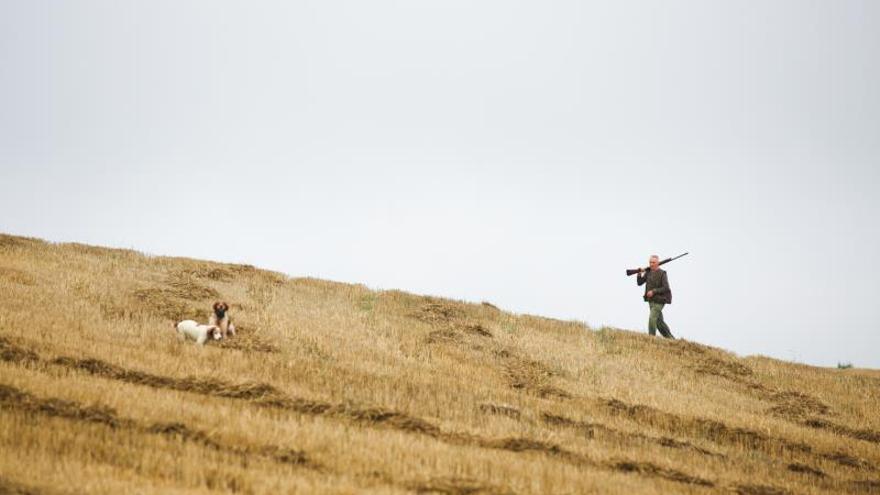 Un cazador a la búsqueda de codornices.