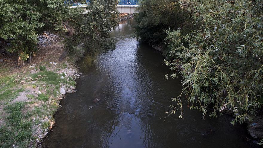 Una zona del Parque Lineal del Manzanares a su paso el barrio de San Fermín, en el distrito de Usera. / Fernando Sánchez