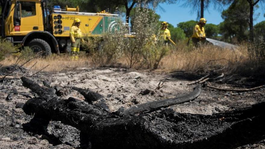 """Diputados de Podemos donan sueldos """"sobrantes"""" para reforestar entorno Doñana"""