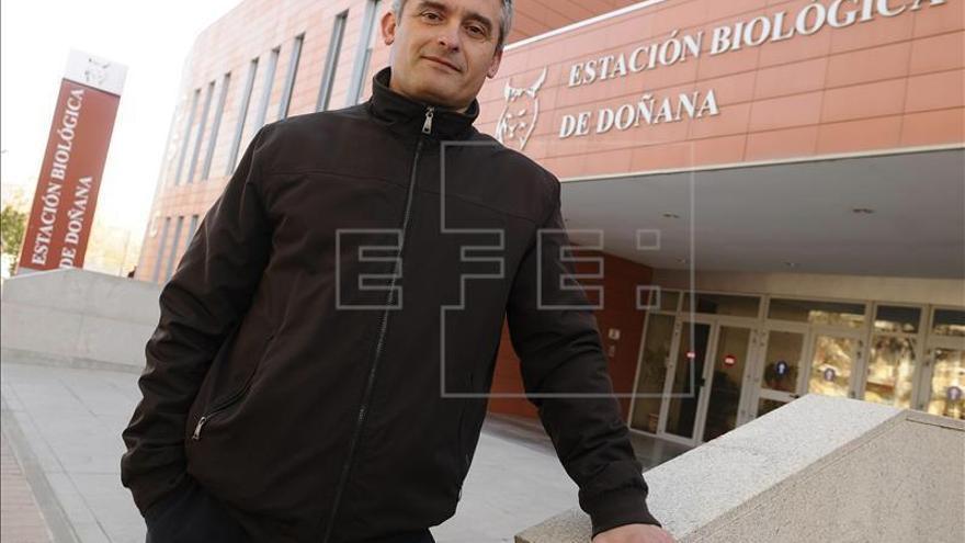 Juan José Negro / EFE