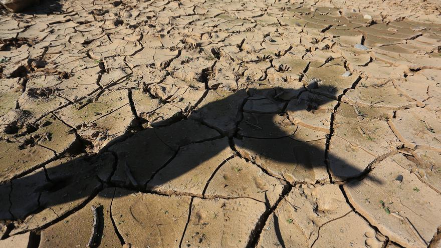 La desertización, uno de los efectos del cambio climático. EFE/Elvis González