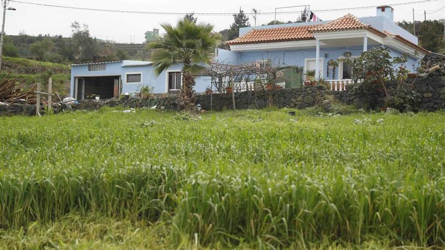 Vivienda situada en Las Llanadas, en Los Realejos, el lugar donde ocurrieron los hechos